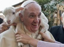 Papa Francisco alerta para o perigo da destruição da natureza