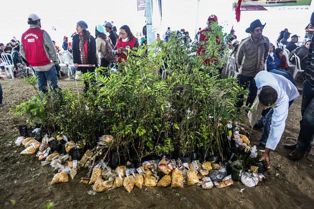 No último dia do evento acontece a partilha de mudas e sementes ( foto de Joka Madruga)